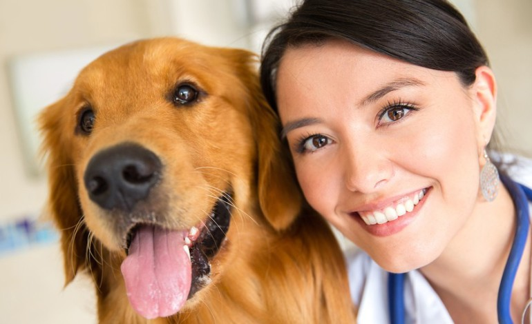 5 Important Vaccinations Your Dog Should Have