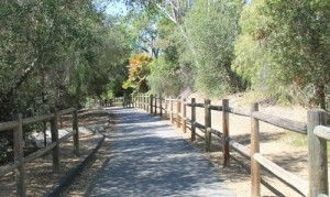 the-50-Plus-Report-Ojai-A-Place-for-the-Wellness-Seekers-Melissa-Rice
